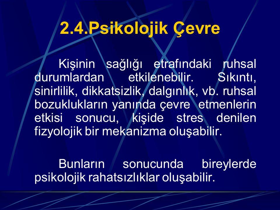 2.4.Psikolojik Çevre