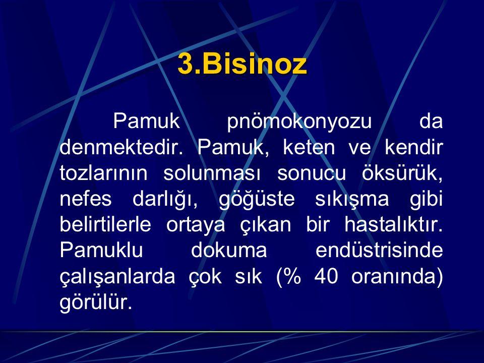 3.Bisinoz