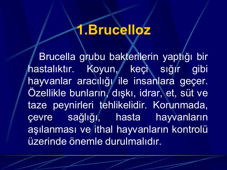 1.Brucelloz
