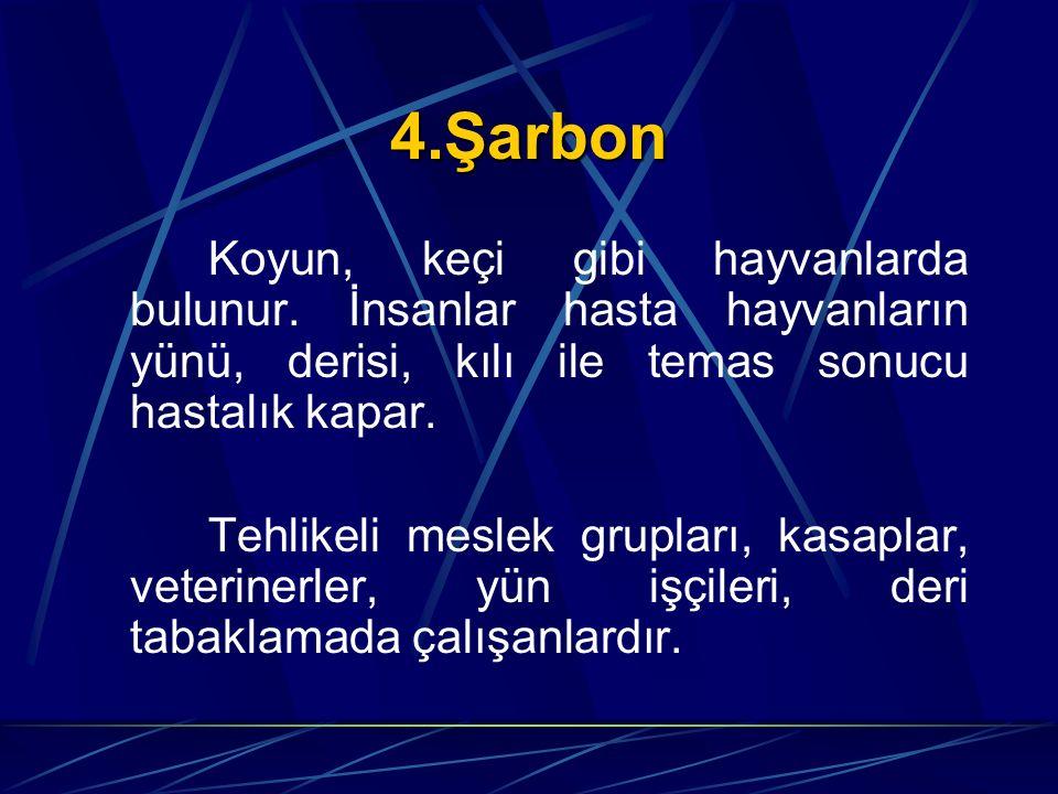 4.Şarbon Koyun, keçi gibi hayvanlarda bulunur. İnsanlar hasta hayvanların yünü, derisi, kılı ile temas sonucu hastalık kapar.