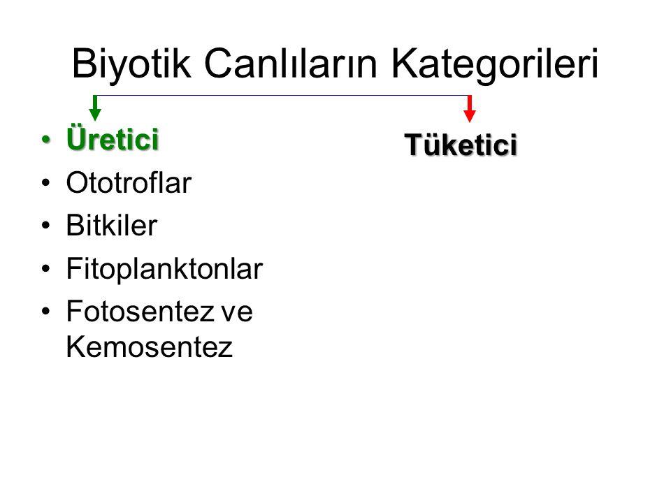 Biyotik Canlıların Kategorileri