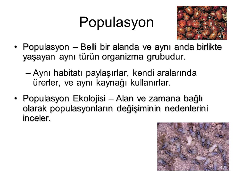 Populasyon Populasyon – Belli bir alanda ve aynı anda birlikte yaşayan aynı türün organizma grubudur.