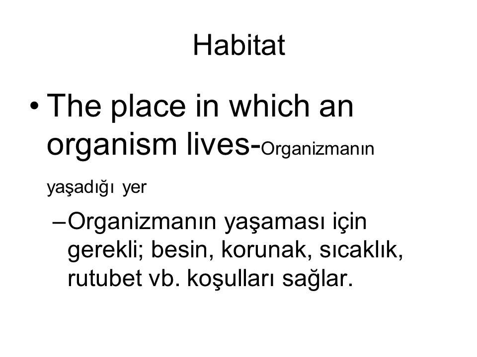 The place in which an organism lives-Organizmanın yaşadığı yer