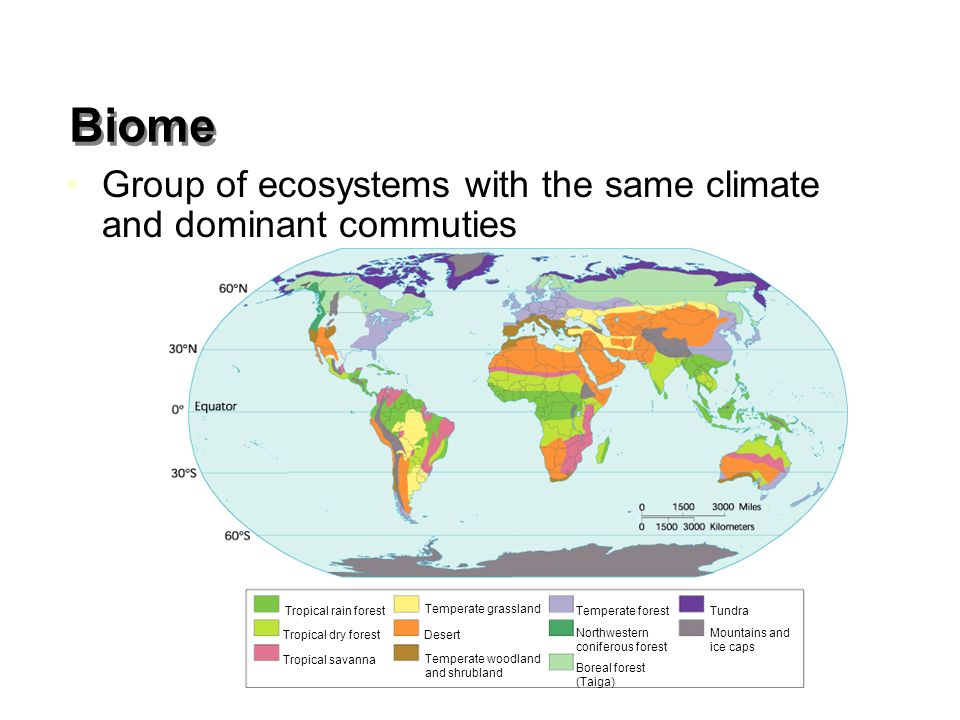 Biome Group of ecosystems with the same climate and dominant commuties