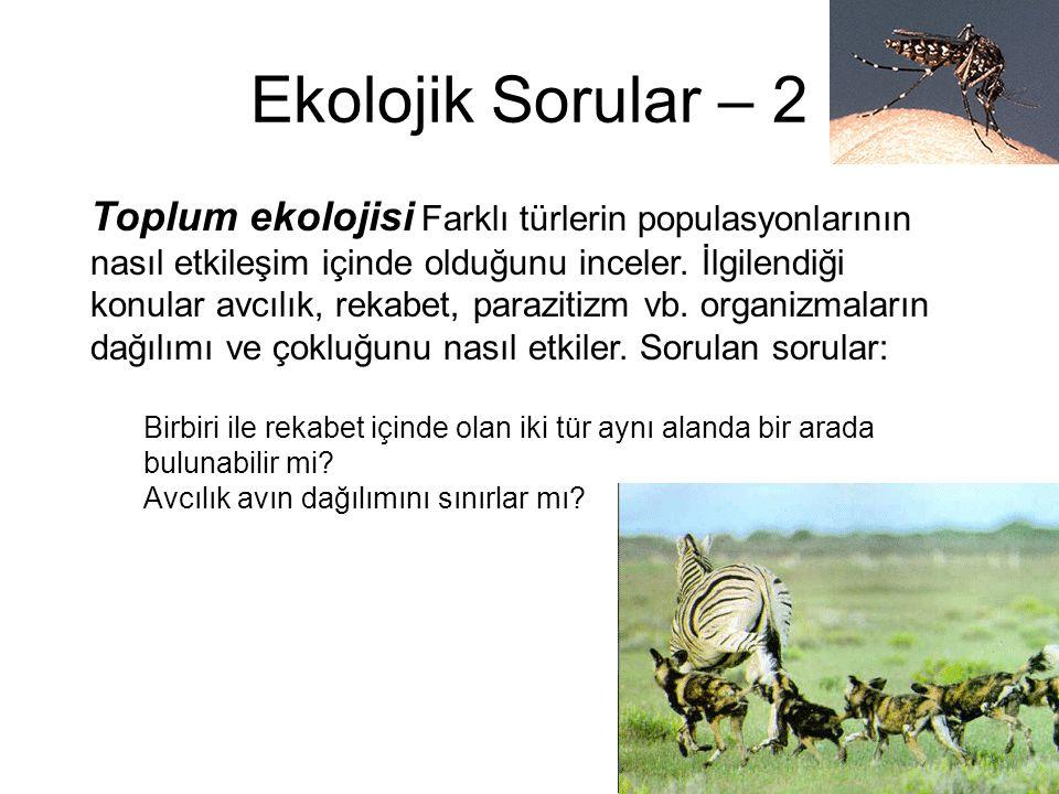 Ekolojik Sorular – 2