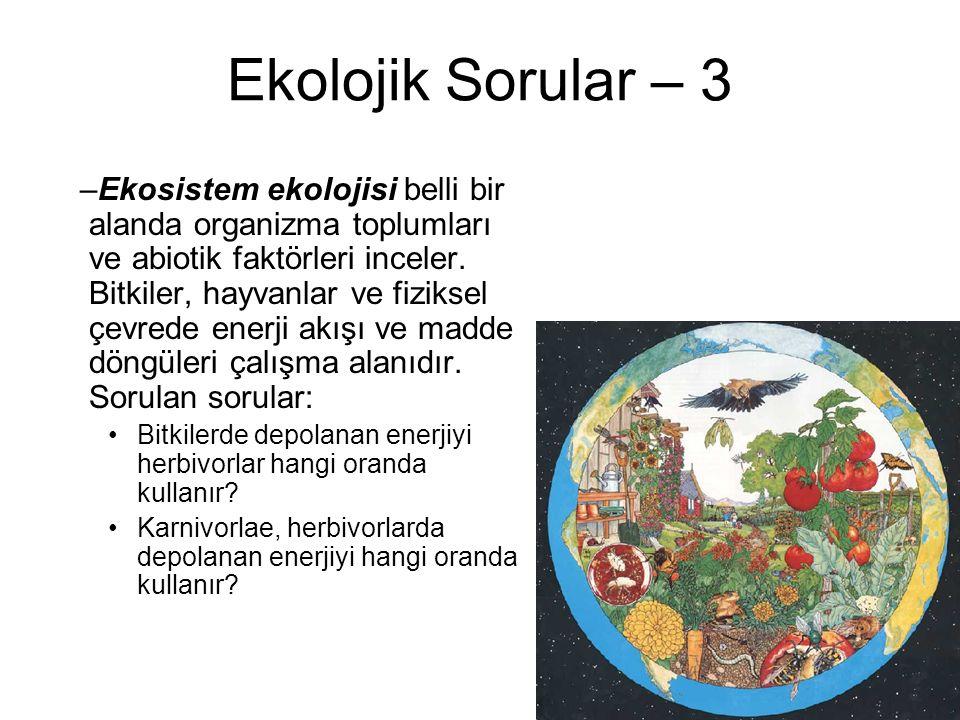Ekolojik Sorular – 3