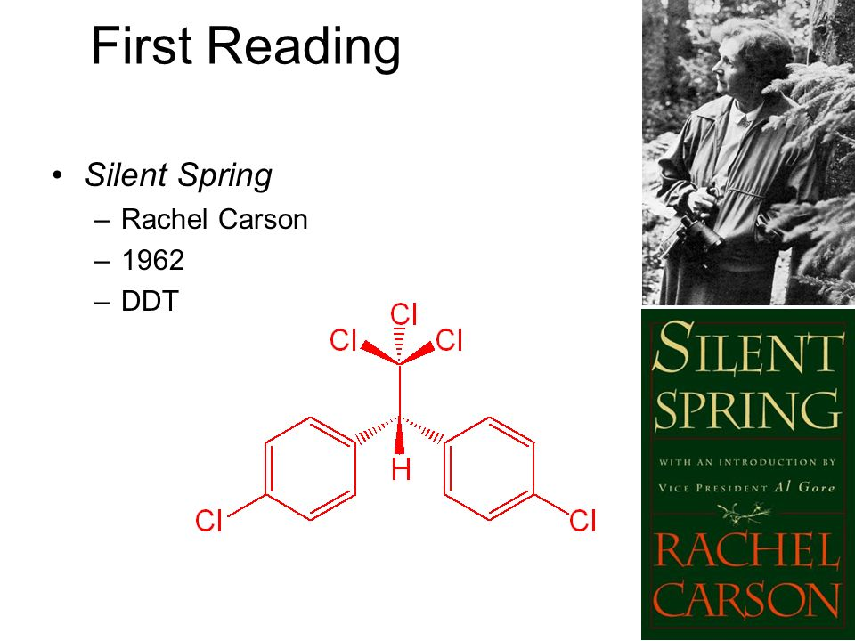 First Reading Silent Spring Rachel Carson 1962 DDT