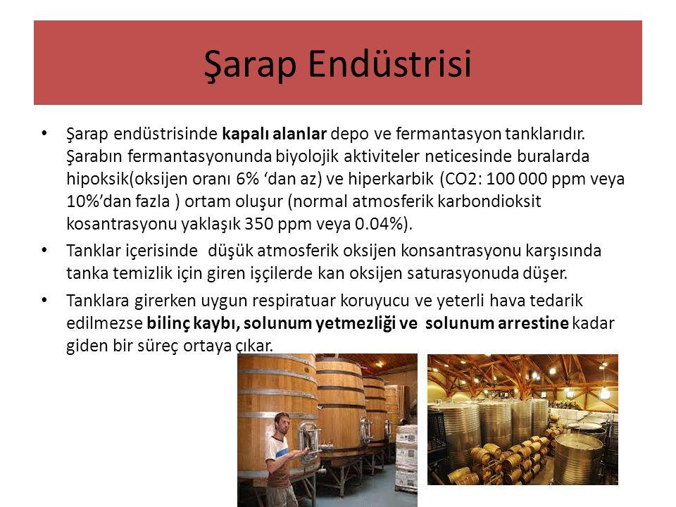 Şarap Endüstrisi