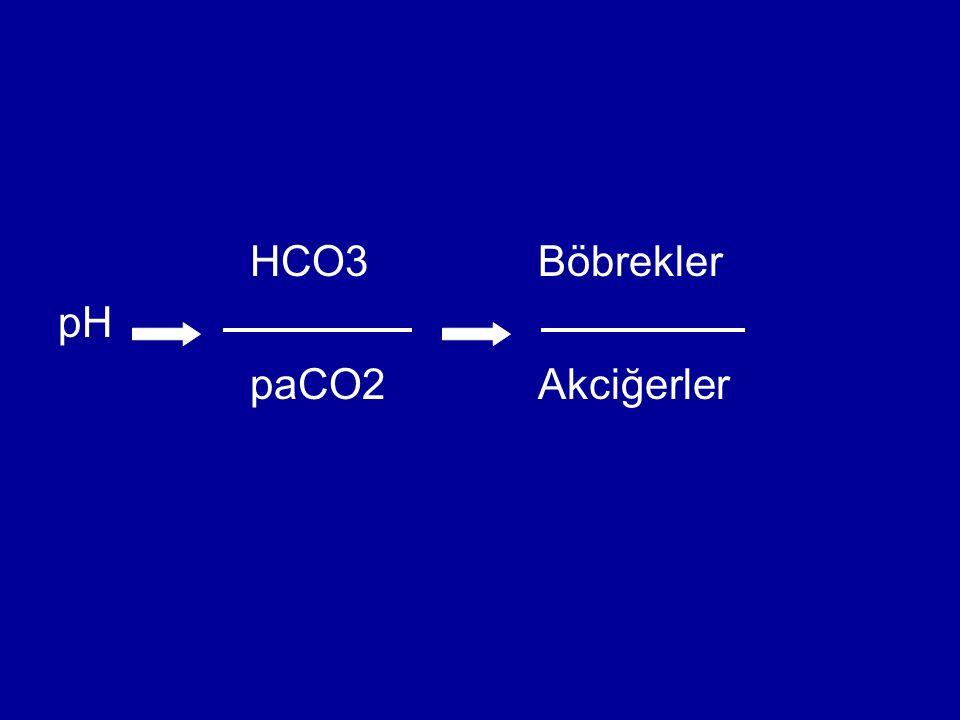 HCO3 Böbrekler pH paCO2 Akciğerler