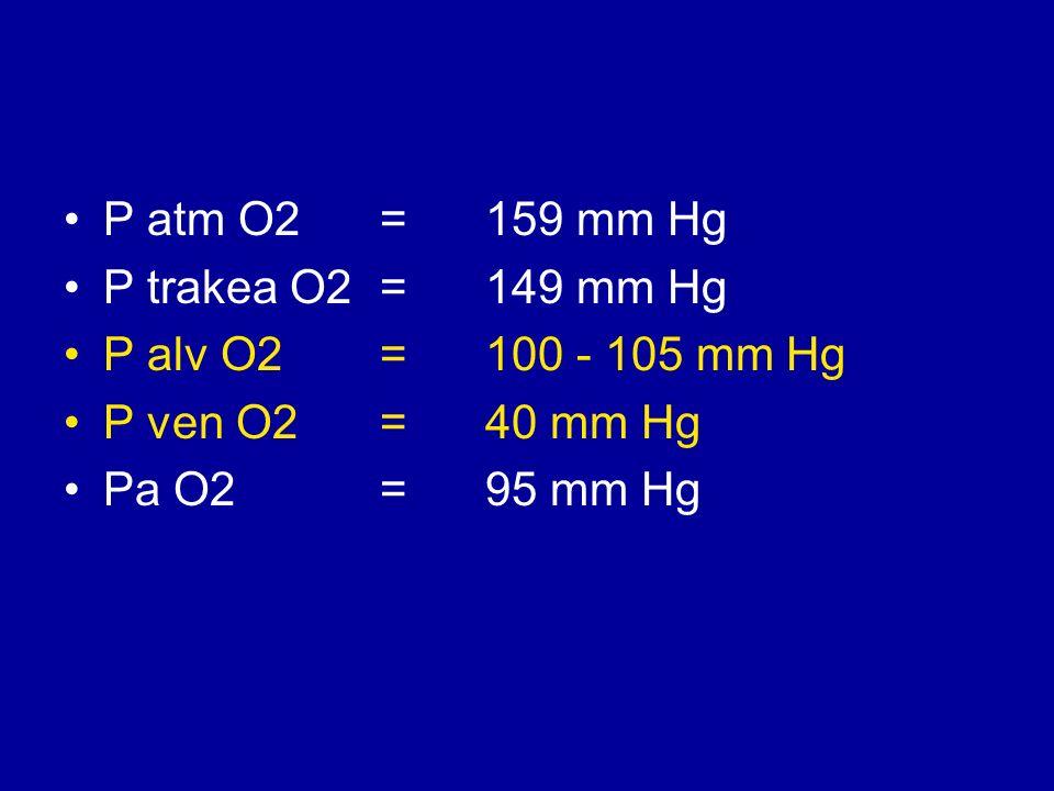 P atm O2 = 159 mm Hg P trakea O2 = 149 mm Hg. P alv O2 = 100 - 105 mm Hg. P ven O2 = 40 mm Hg.