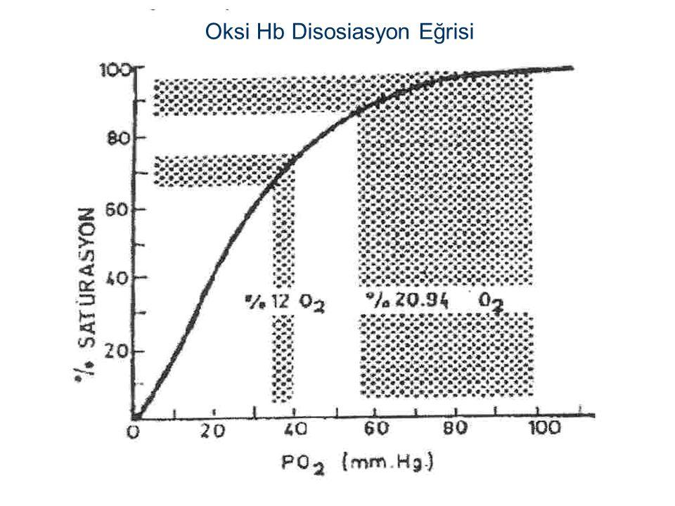 Oksi Hb Disosiasyon Eğrisi