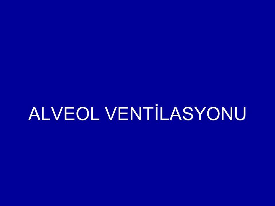 ALVEOL VENTİLASYONU