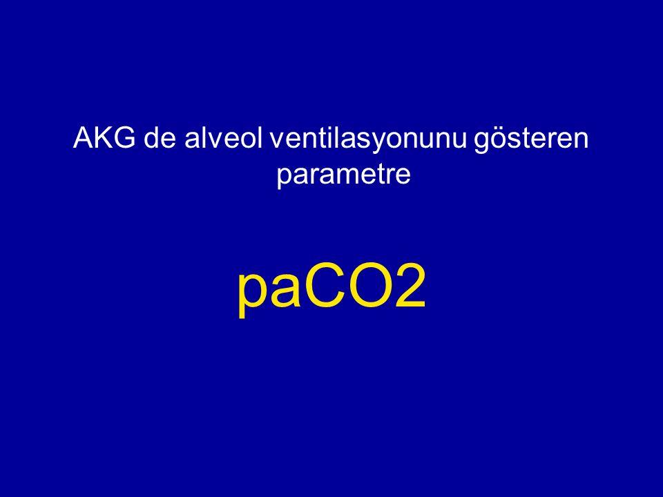 AKG de alveol ventilasyonunu gösteren parametre