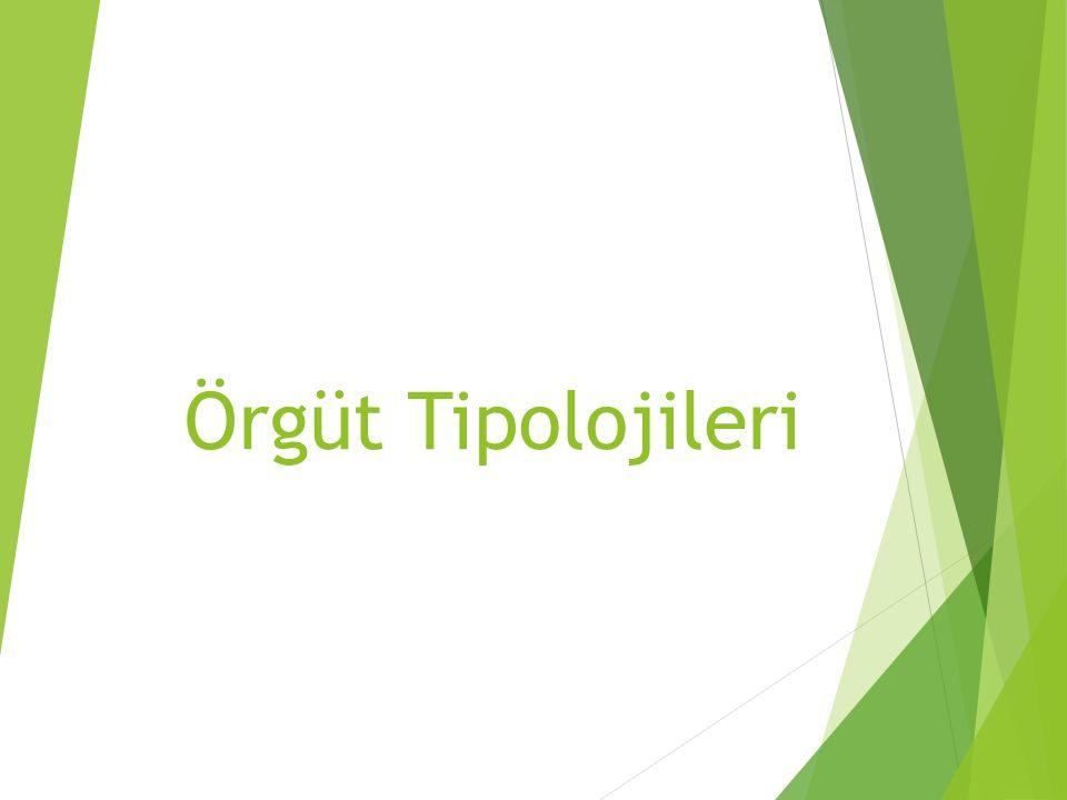 Örgüt Tipolojileri