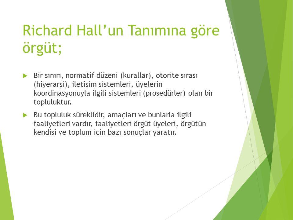 Richard Hall'un Tanımına göre örgüt;