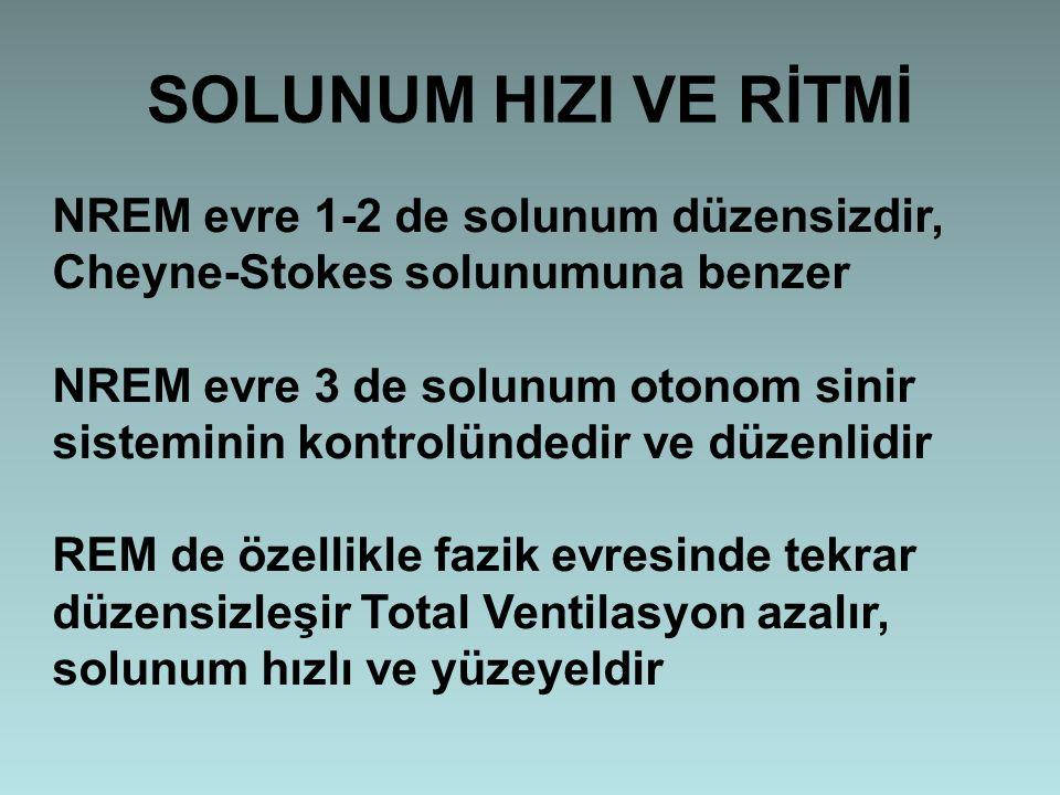 SOLUNUM HIZI VE RİTMİ NREM evre 1-2 de solunum düzensizdir, Cheyne-Stokes solunumuna benzer.