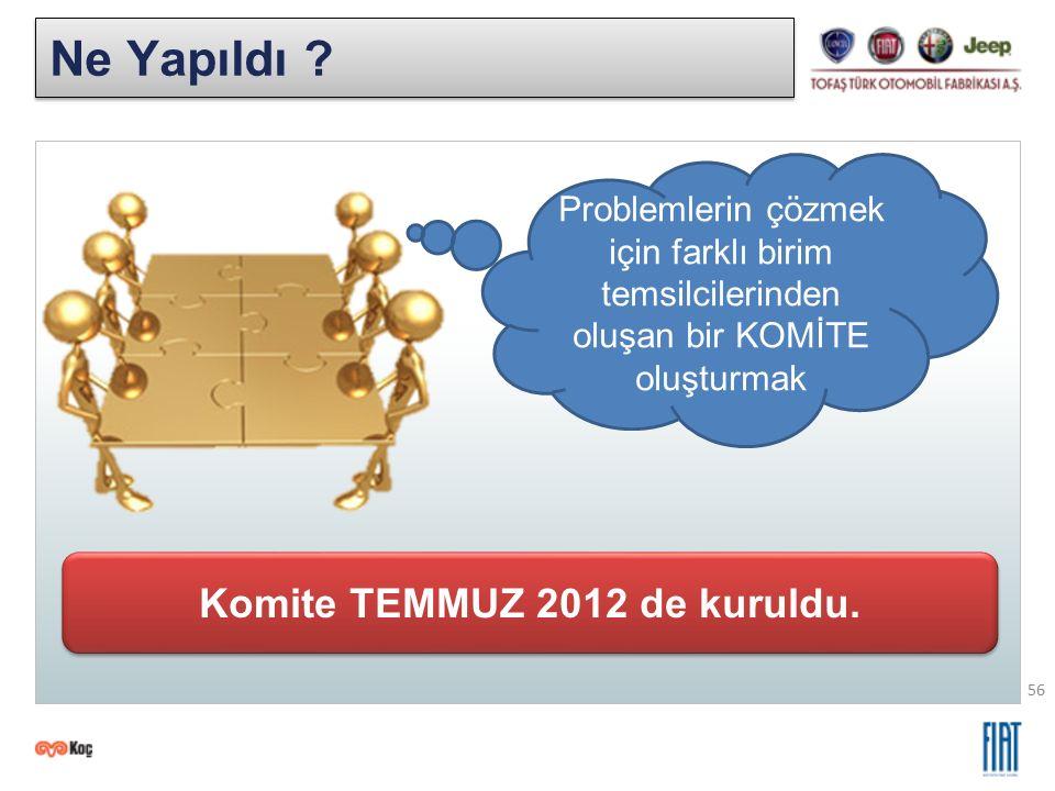 Komite TEMMUZ 2012 de kuruldu.