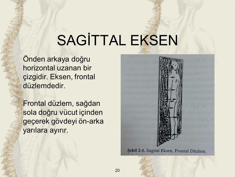 SAGİTTAL EKSEN Önden arkaya doğru horizontal uzanan bir çizgidir. Eksen, frontal düzlemdedir.