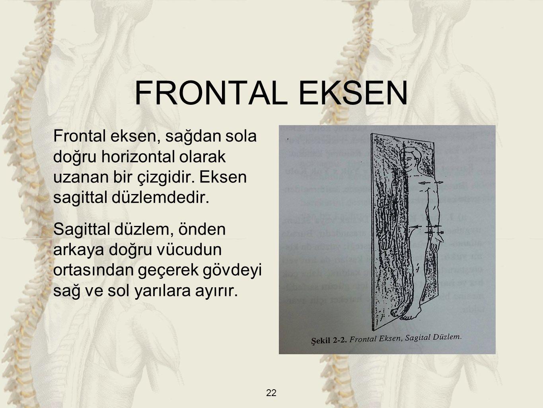 FRONTAL EKSEN Frontal eksen, sağdan sola doğru horizontal olarak uzanan bir çizgidir. Eksen sagittal düzlemdedir.