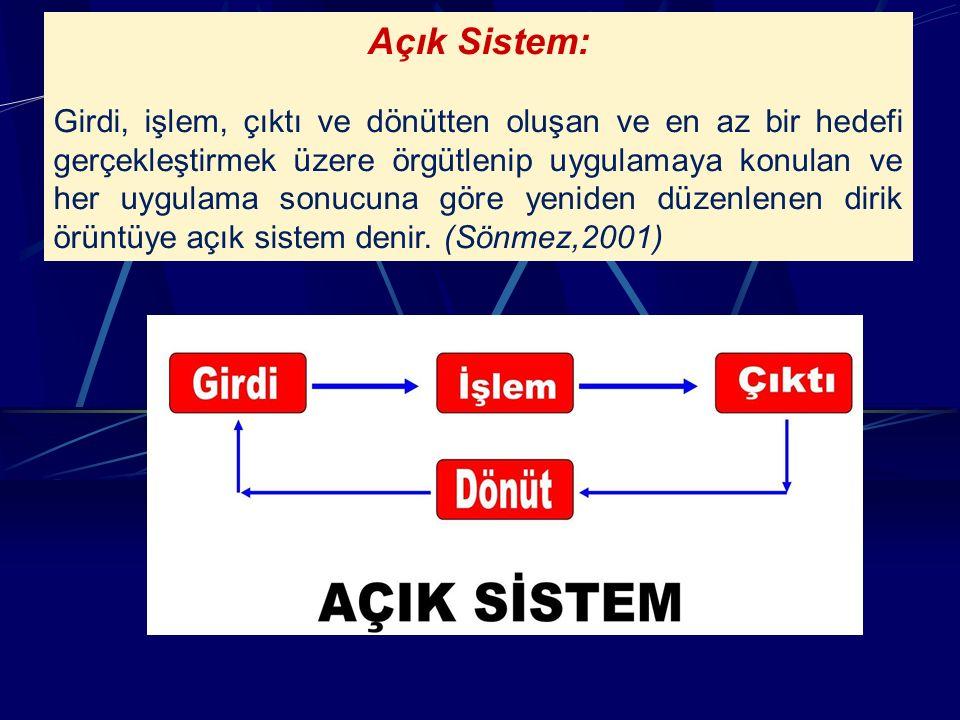 Açık Sistem: