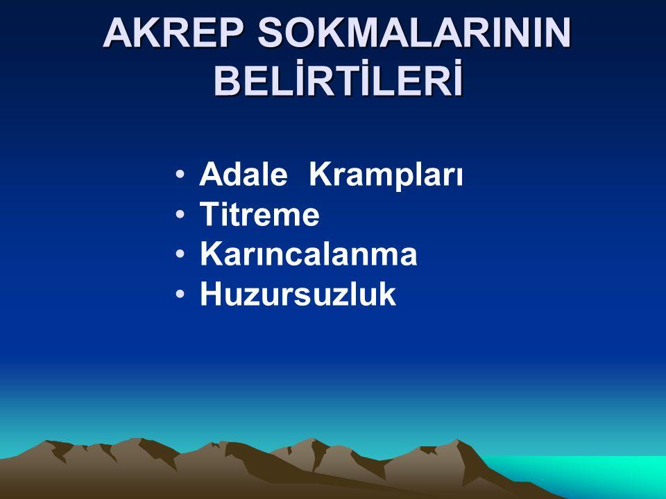 AKREP SOKMALARININ BELİRTİLERİ