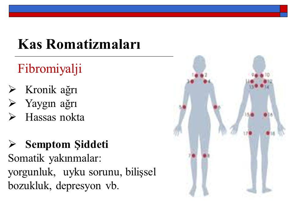 Kas Romatizmaları Fibromiyalji Kronik ağrı Yaygın ağrı Hassas nokta