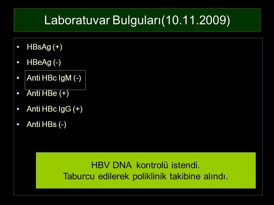 Laboratuvar Bulguları(10.11.2009)