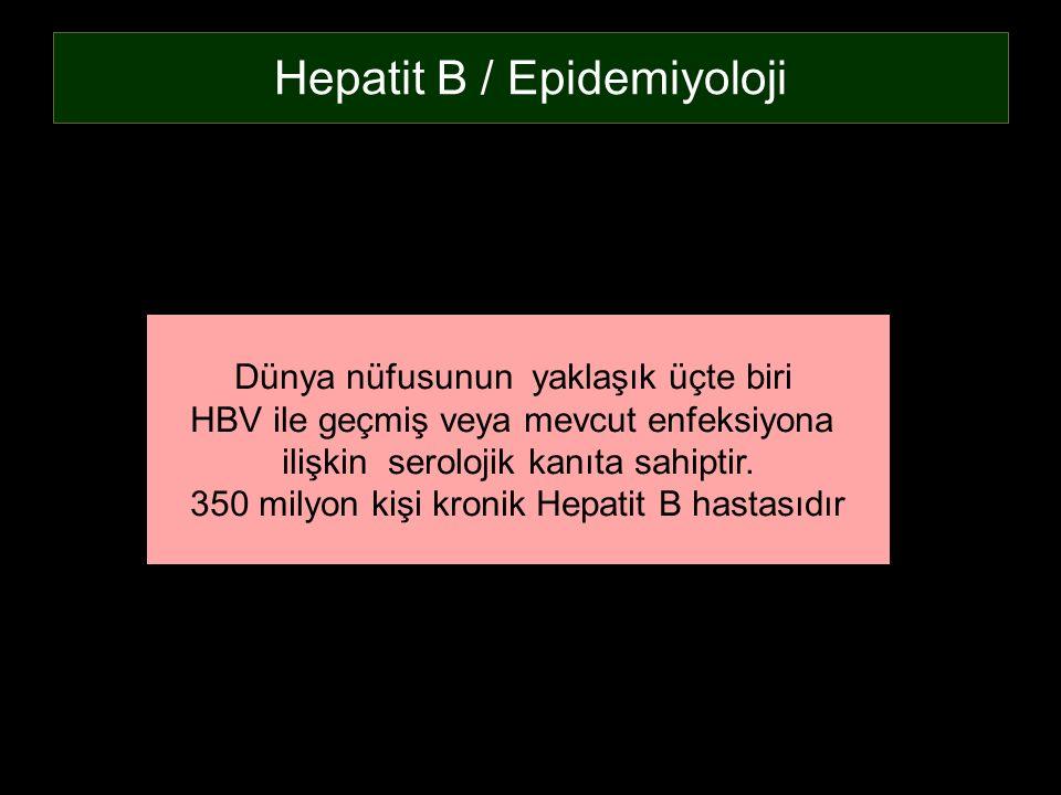 Hepatit B / Epidemiyoloji