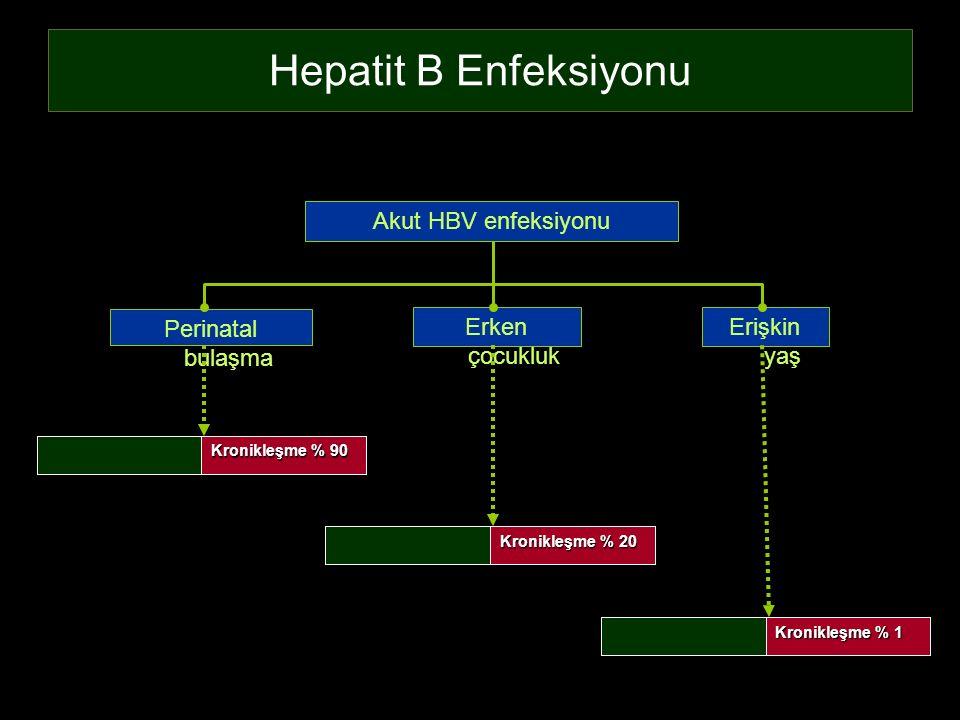 Hepatit B Enfeksiyonu Perinatal bulaşma Erişkin yaş Erken çocukluk