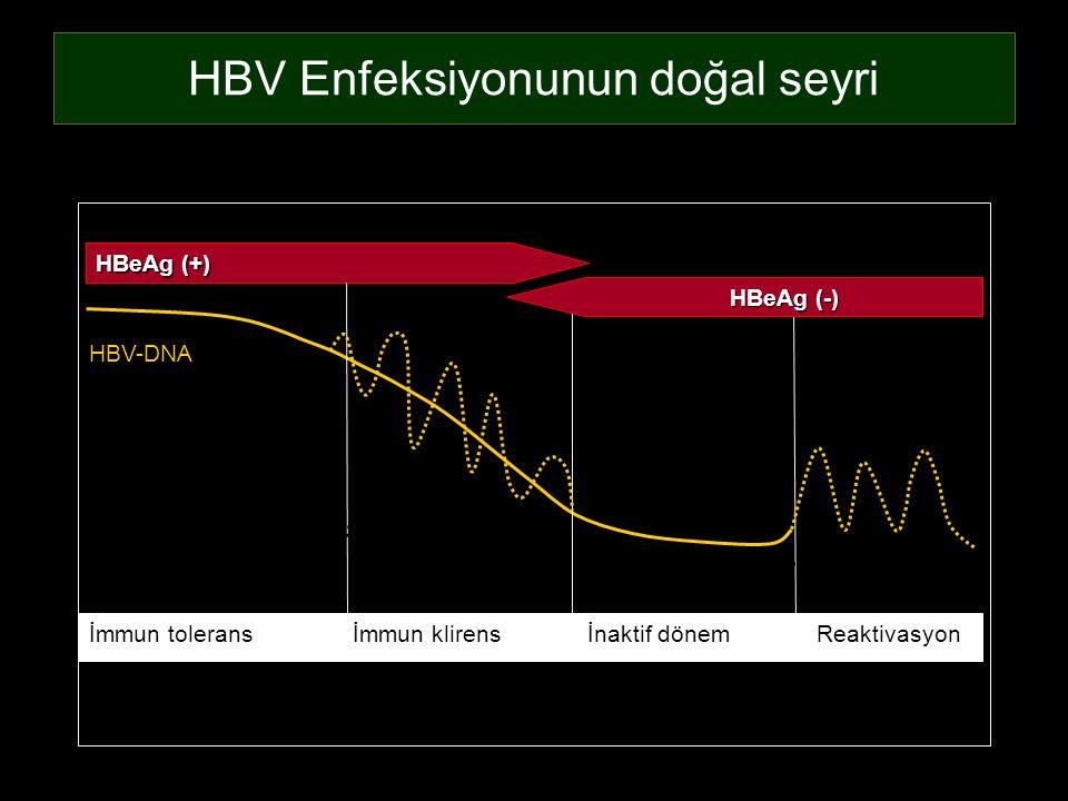 HBV Enfeksiyonunun doğal seyri