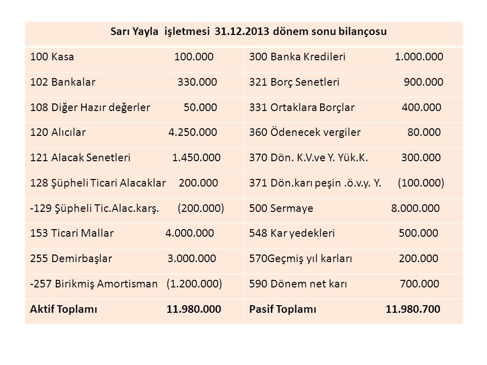 Sarı Yayla işletmesi 31.12.2013 dönem sonu bilançosu