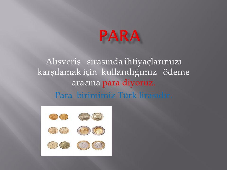 Para birimimiz Türk lirasıdır.