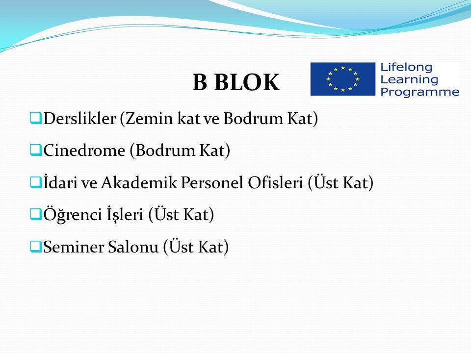 B BLOK Derslikler (Zemin kat ve Bodrum Kat) Cinedrome (Bodrum Kat)