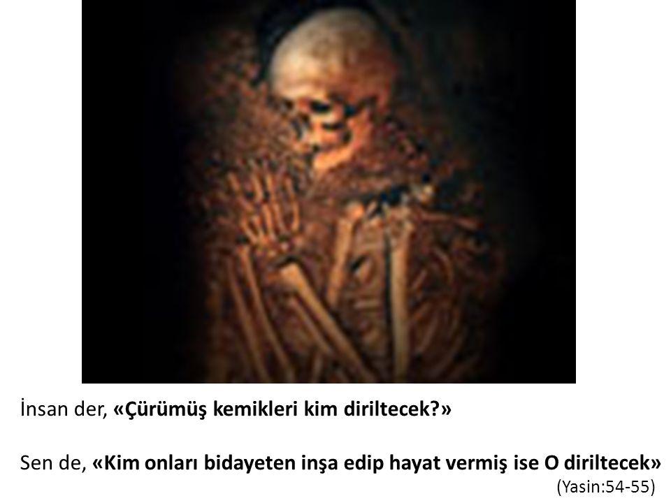 İnsan der, «Çürümüş kemikleri kim diriltecek