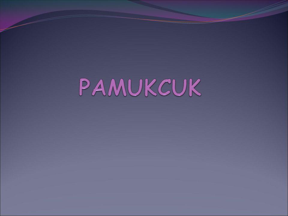 PAMUKCUK