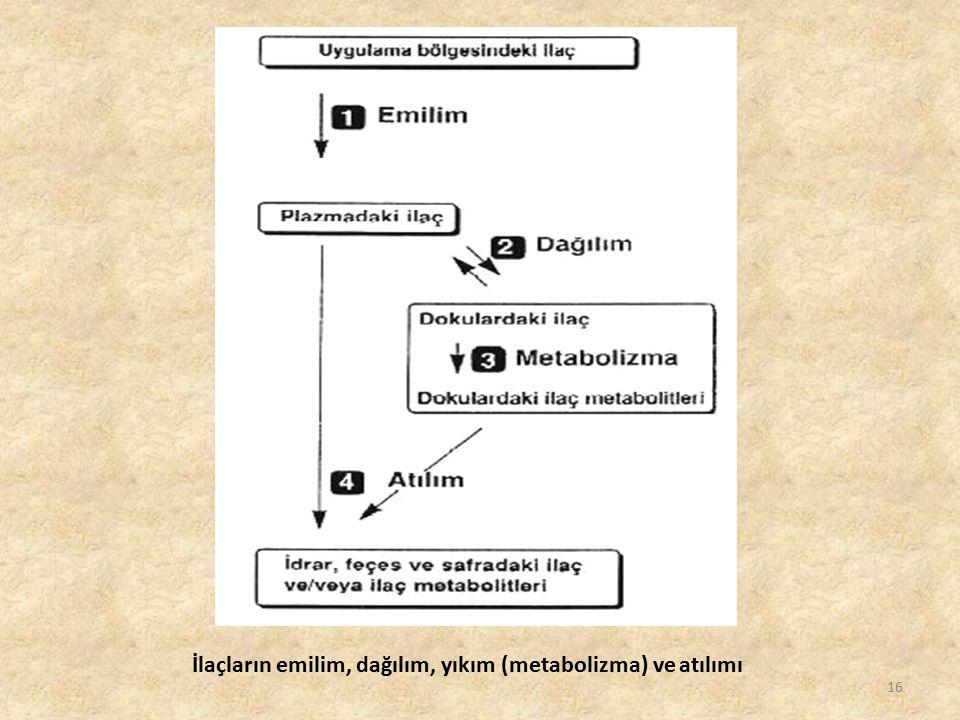 İlaçların emilim, dağılım, yıkım (metabolizma) ve atılımı