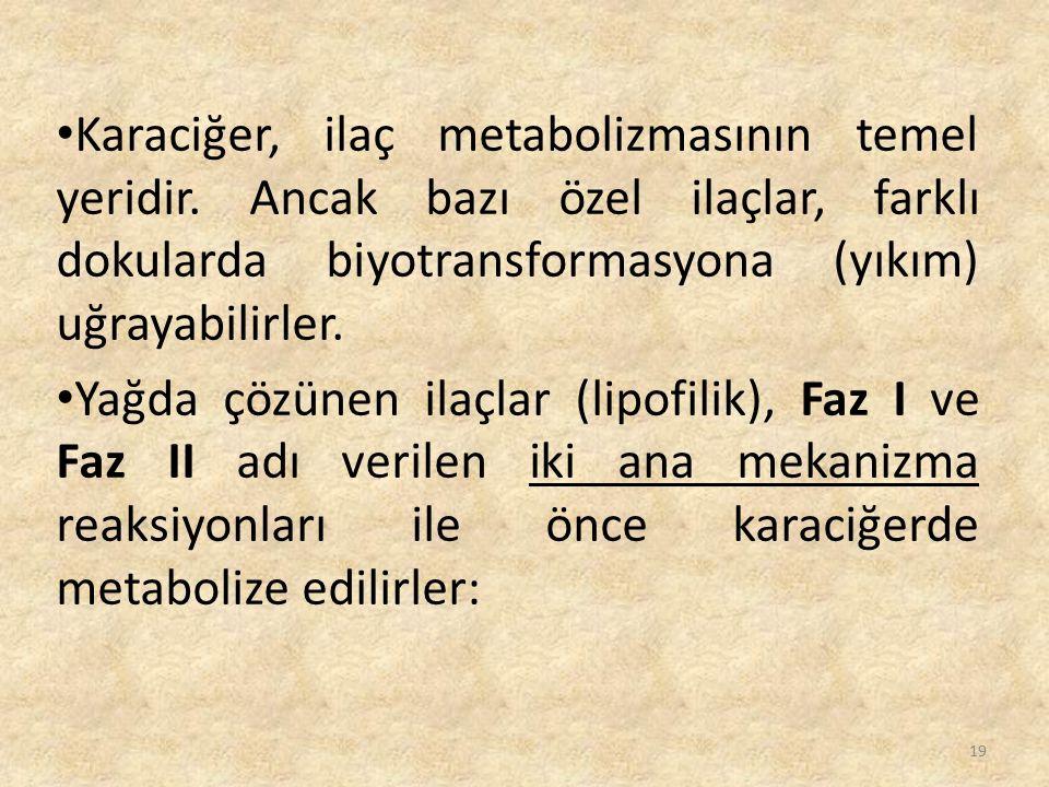 Karaciğer, ilaç metabolizmasının temel yeridir