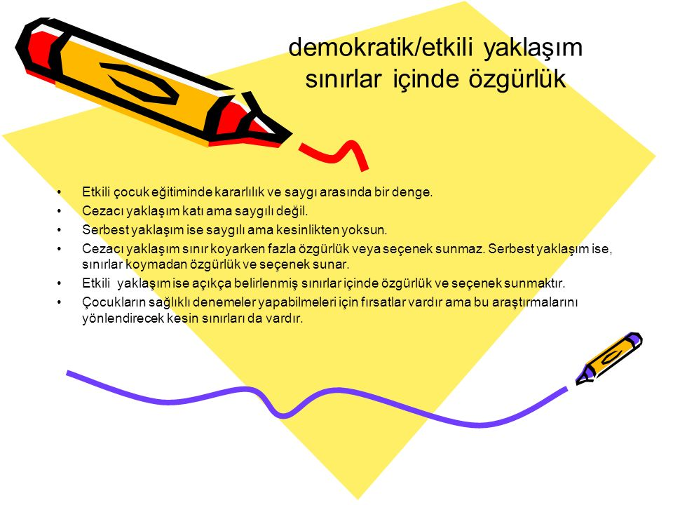 demokratik/etkili yaklaşım sınırlar içinde özgürlük