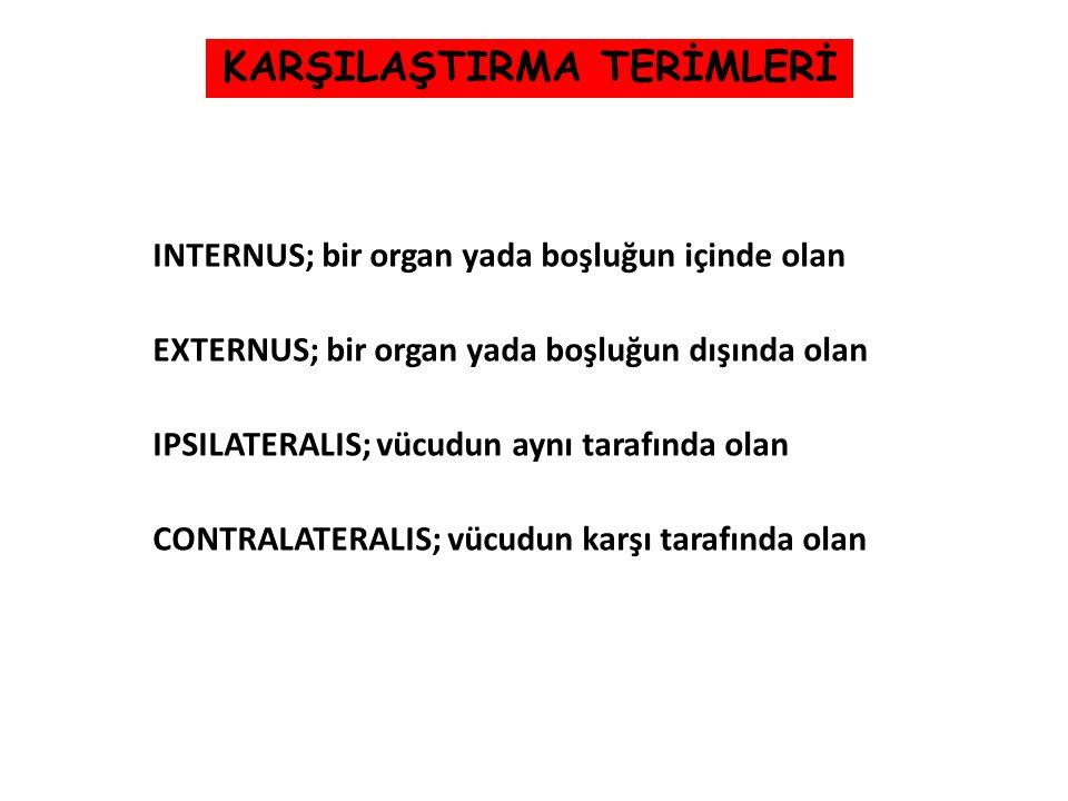 KARŞILAŞTIRMA TERİMLERİ