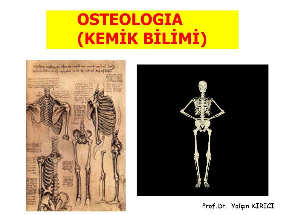 OSTEOLOGIA (KEMİK BİLİMİ)