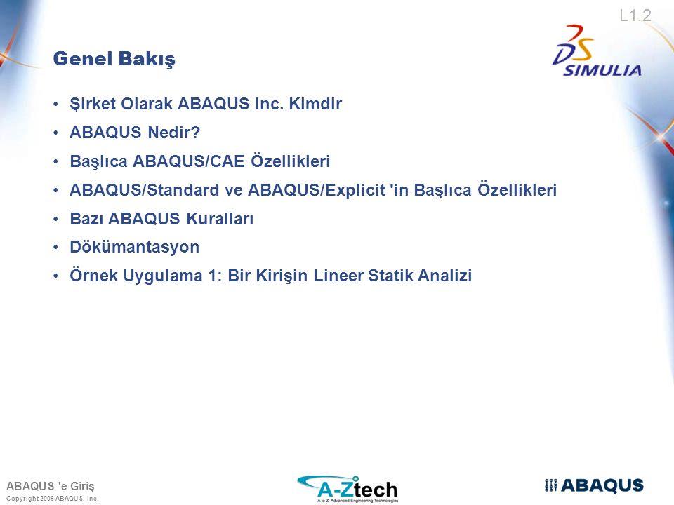 Genel Bakış Şirket Olarak ABAQUS Inc. Kimdir ABAQUS Nedir