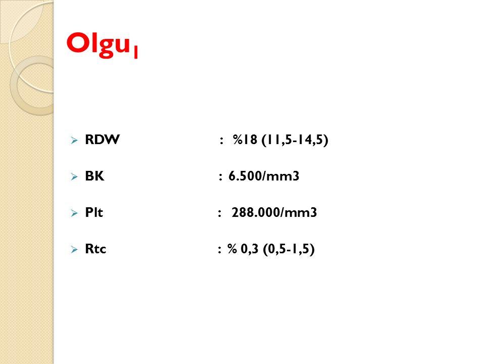 Olgu1 RDW : %18 (11,5-14,5) BK : 6.500/mm3 Plt : 288.000/mm3