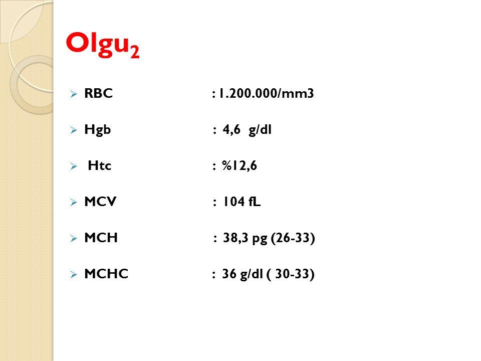 Olgu2 RBC : 1.200.000/mm3 Hgb : 4,6 g/dl Htc : %12,6 MCV : 104 fL