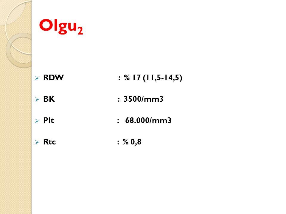 Olgu2 RDW : % 17 (11,5-14,5) BK : 3500/mm3 Plt : 68.000/mm3