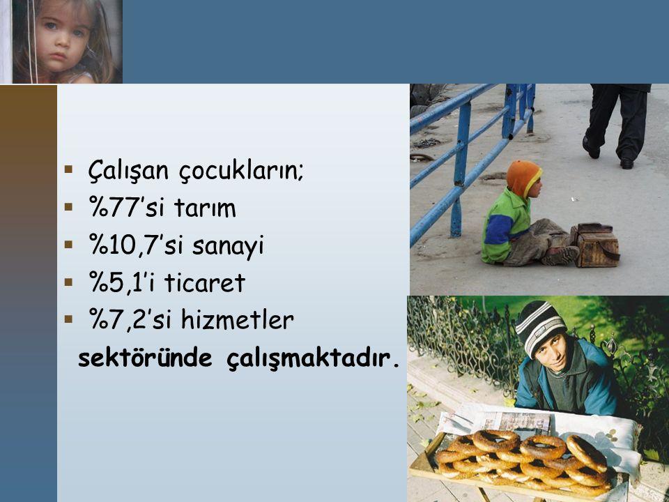 Çalışan çocukların; %77'si tarım. %10,7'si sanayi.