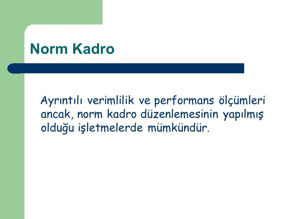 Norm Kadro Ayrıntılı verimlilik ve performans ölçümleri ancak, norm kadro düzenlemesinin yapılmış olduğu işletmelerde mümkündür.