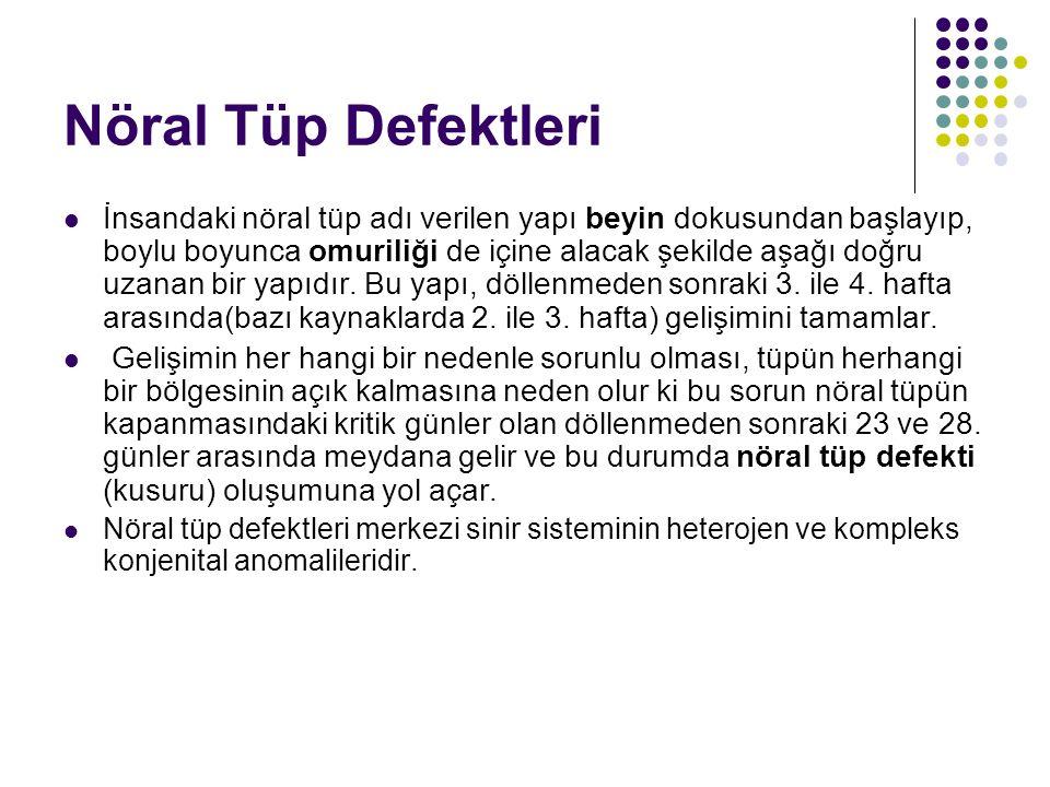 Nöral Tüp Defektleri