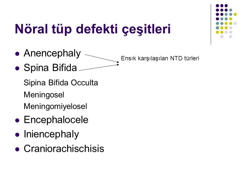 Nöral tüp defekti çeşitleri