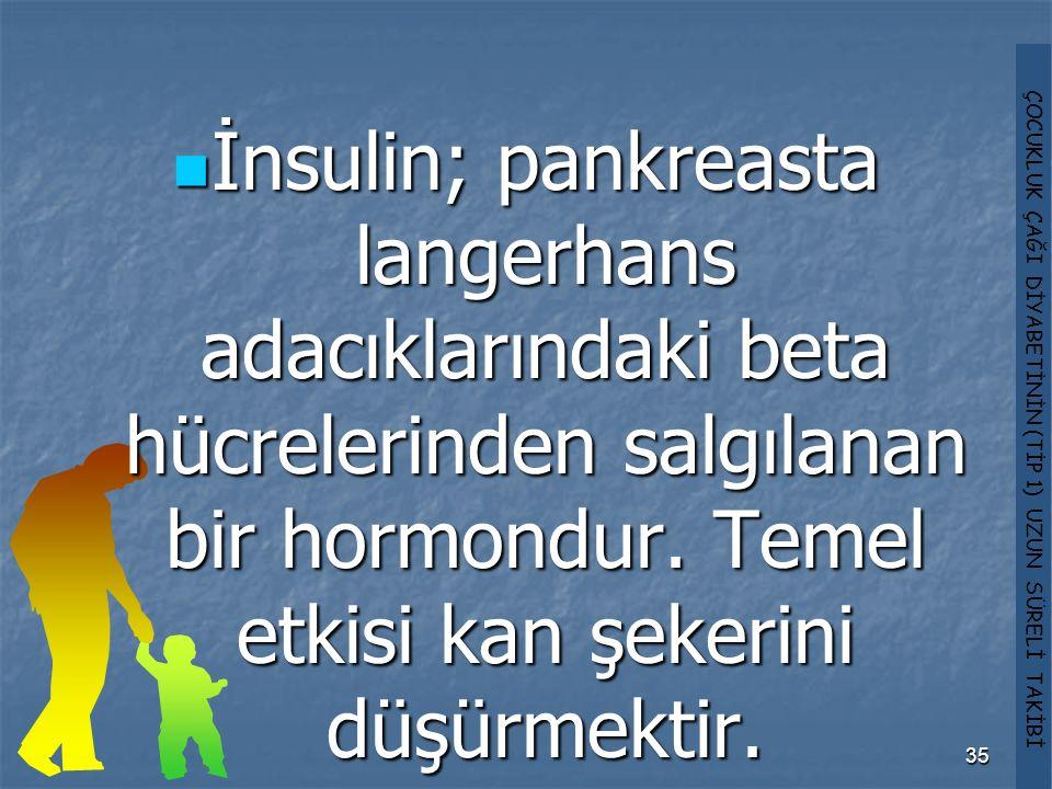 İnsulin; pankreasta langerhans adacıklarındaki beta hücrelerinden salgılanan bir hormondur.