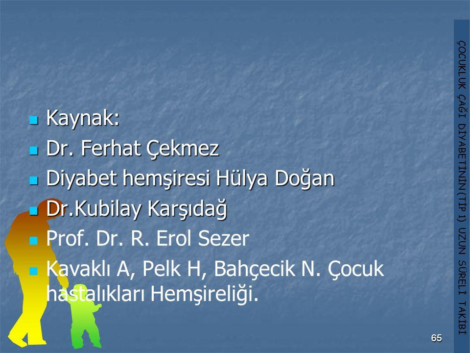 Kaynak: Dr. Ferhat Çekmez. Diyabet hemşiresi Hülya Doğan. Dr.Kubilay Karşıdağ. Prof. Dr. R. Erol Sezer.